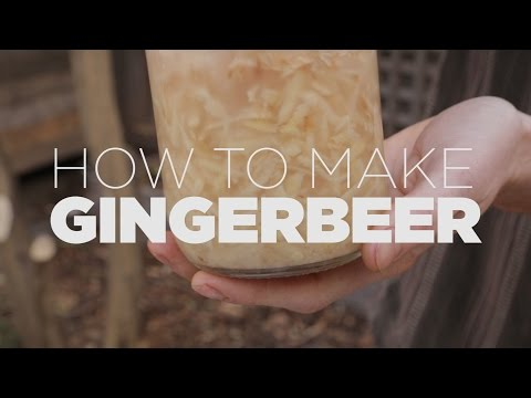 How to make Ginger Beer - probiotic or alcoholic, you decide!