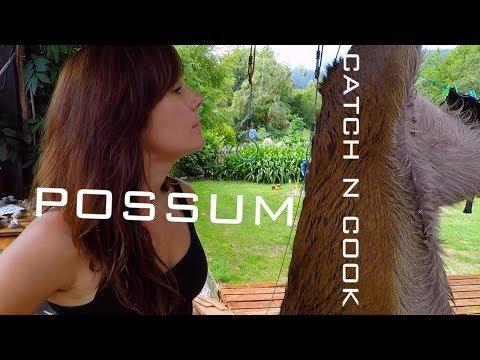 POSSUM Catch And Cook NEW ZEALAND