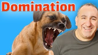 Dogs and domination explained.