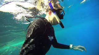 My buddy freediving Marriott Sharm el sheikh.