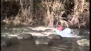 Most Extreme Elimination Challenge - Top 25 Most Painful Eliminations of Season 3