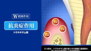 デントヘルス 薬用ハミガキ無研磨ゲルの商品特長/67秒/ライオン
