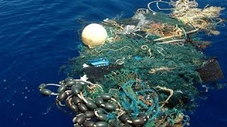 Which Countries Create the Most Ocean Trash?