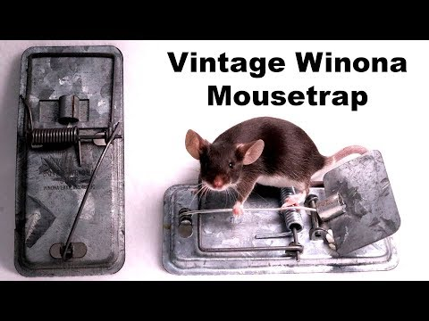 Vintage WINONA Metal Mousetrap from 1952. Mousetrap Monday