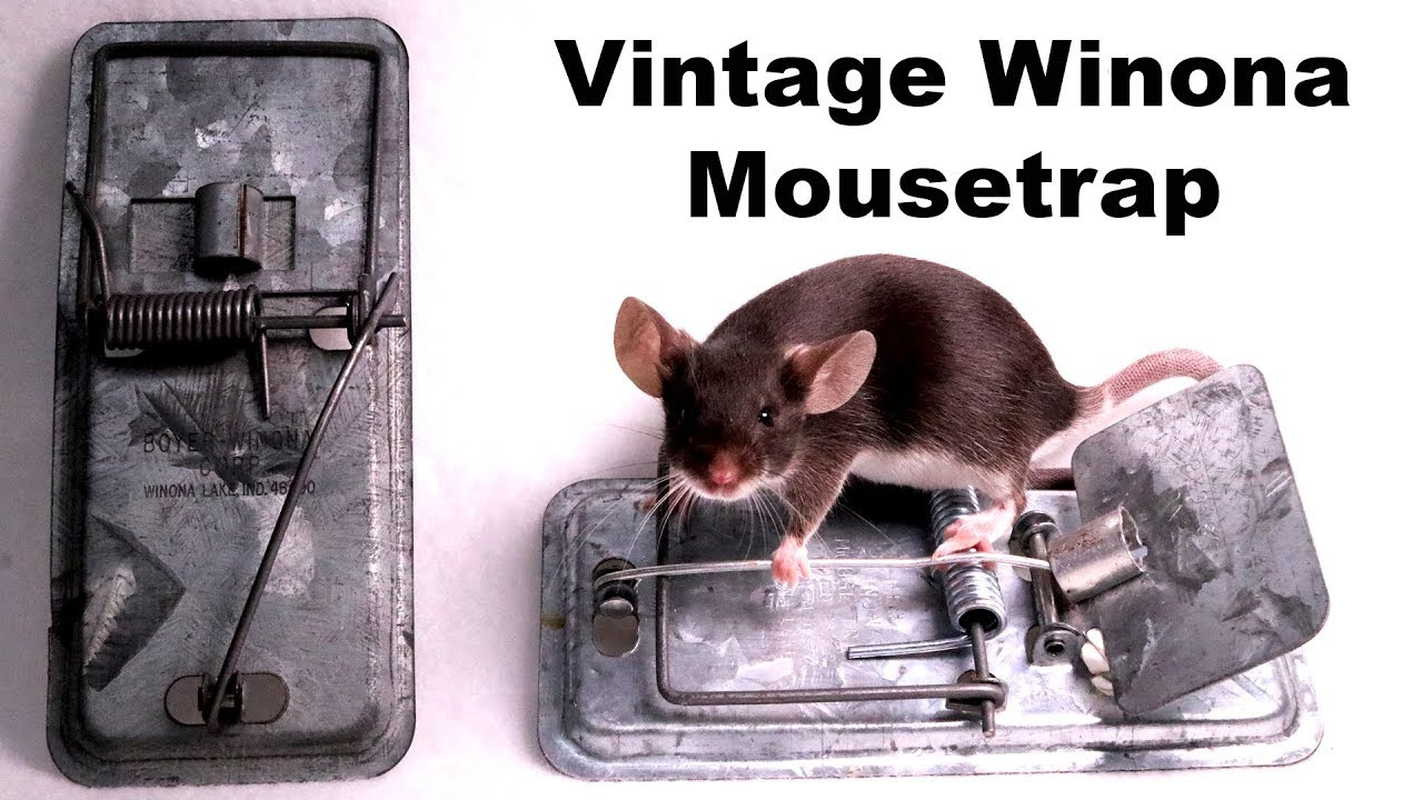 vintage-winona-metal-mousetrap-from-1952-mousetrap-monday