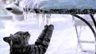 Whiskas Werbung Commercial Weihnachten