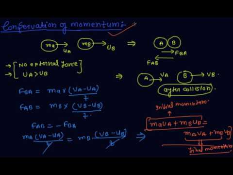 Conservation Of Momentum Class 9 Physics Force And Laws Of Motion