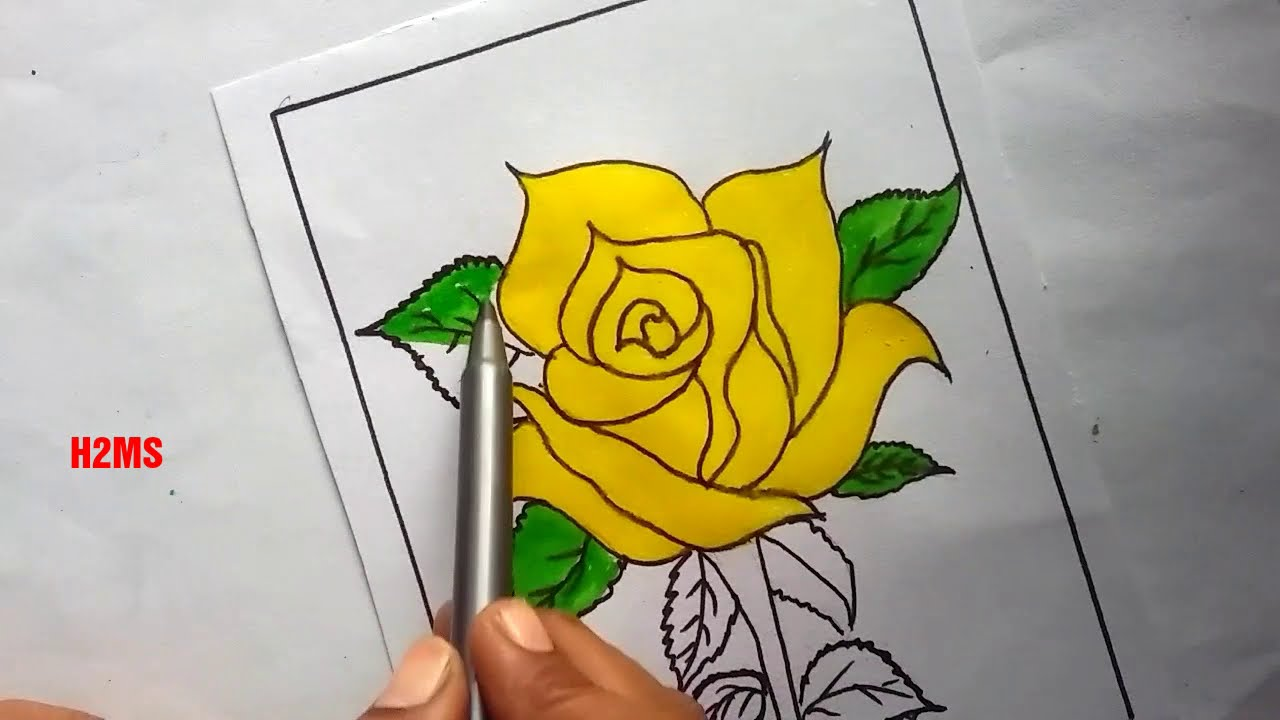 how to make simple Rose Flower Drawing | H2MS drawing | yellow rose flower | @how to make simple 