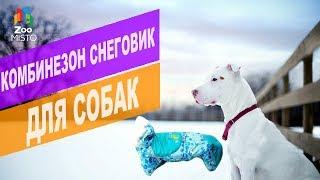 Комбинезон Снеговик для собак | Обзор одежды для собак