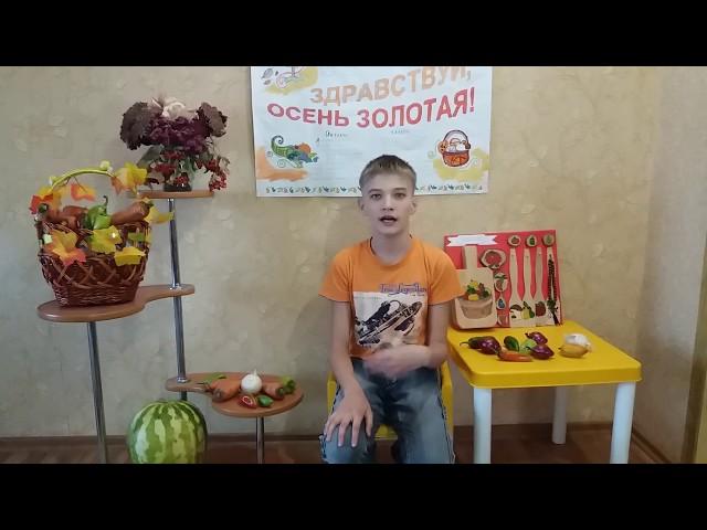Изображение предпросмотра прочтения – ВладимирДемьяненко читает произведение «Яркая осень» Т.Е.Лавровой