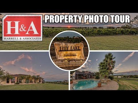 Lily Lake Vineyards @ 300 County Road 433 - Lorena, Texas 76655