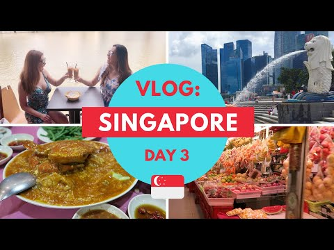 SINGAPORE Travel Vlog: Day 3