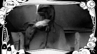 """""""Bassline Junkie (Radio Edit)"""" Fan Video"""