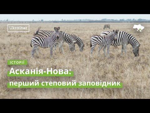 Асканія-Нова: перший степовий заповідник · Ukraїner