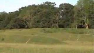 Badbury Rings Ancient Hill Fort 02/06/07