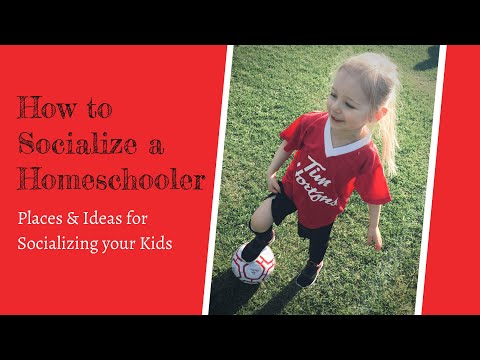 How to Socialize a Homeschooler | Places and Ideas for Socializing your Kids| Raising A to Z
