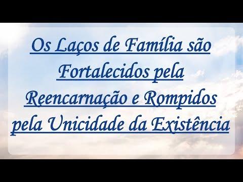 LAÇOS DE FAMÍLIA SÃO FORTALECIDOS PELA REENCARNAÇÃO - Cap. 4