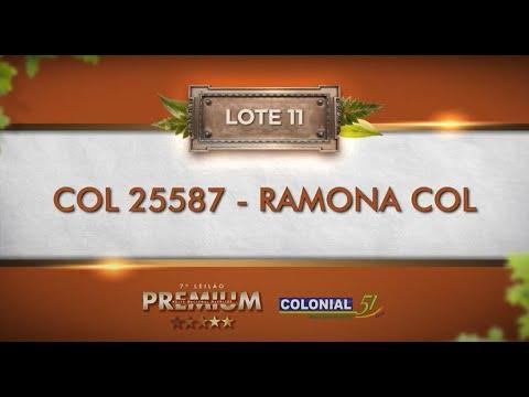 LOTE 11   COL 25587