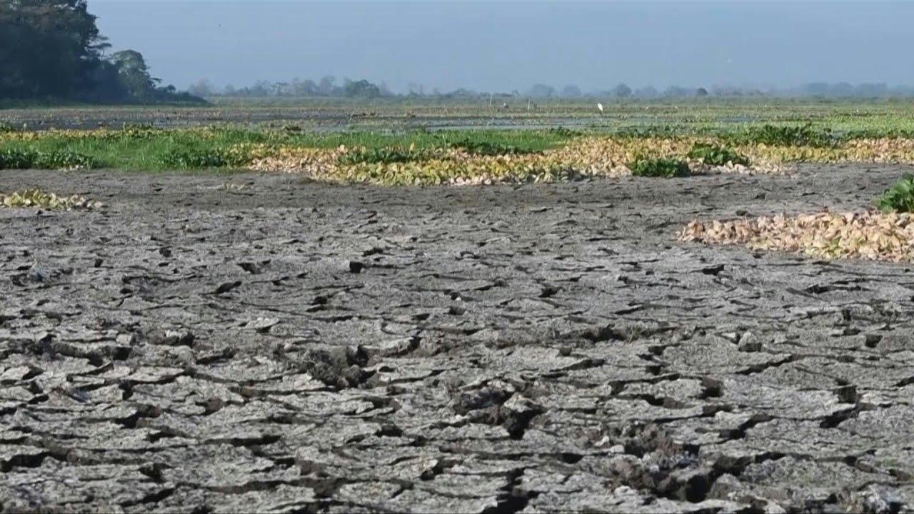 (HONDURAS - September 2019) Honduras is hit by a severe drought | AFP
