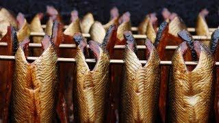 видео Копчение рыбы и мяса. Варианты коптильных устройств.