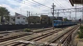 西武 新101系 251F 近江鉄道塗装 白糸台駅構内入替作業