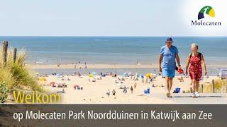 Welkom op Molecaten Park Noordduinen, Katwijk aan Zee, Zuid-Holland