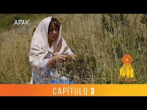 BAJO UN MISMO SOL - CAPÍTULO 3 - TEMPORADA 13