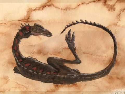 Tribute to Elaphrosaurus.