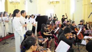 Tình Yêu Chúa Gọi Con - Lm Nguyễn Duy