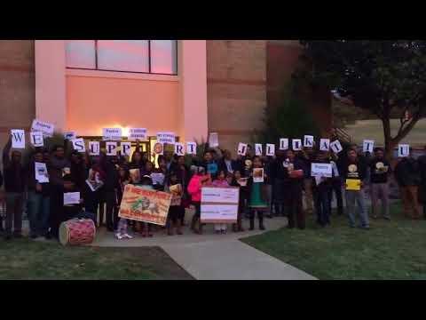 TSM Jallikattu Protest-3