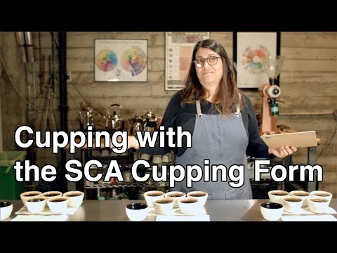 Cupping coffee with the SCA form
