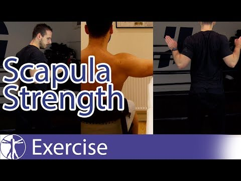 Scapula Strengthening Exercises | Early Shoulder Rehab