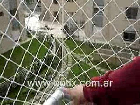 Cerramiento de balc n con red youtube - Cerramientos de balcones ...