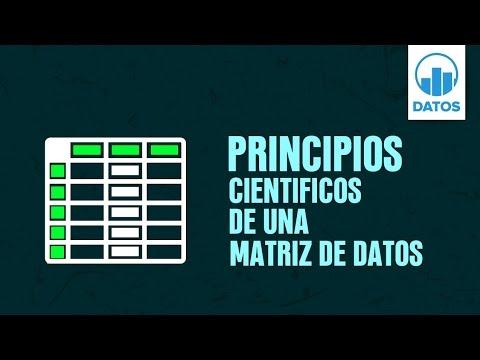 01.  Principios científicos de una matriz de datos | DATOS 2.0 MINI