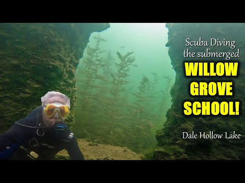 Body buried in the now submerged Willow Grove School – The Saga of EDDIE IRONS Episode 278