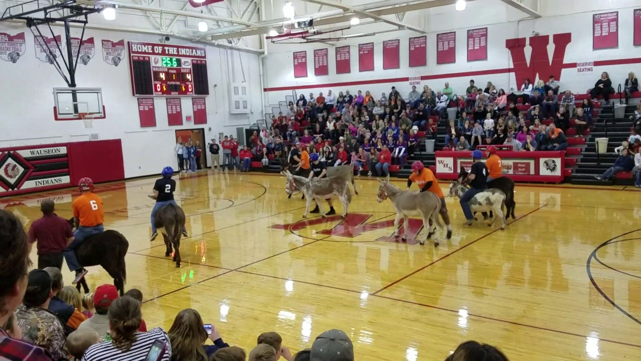 One year ago my hometown held a basketball game for school faculty members while riding donkeys. And it became a night to remember.