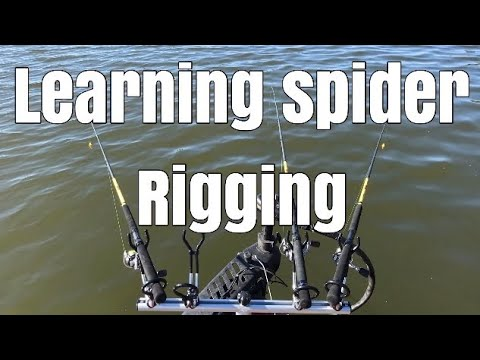 Learning To Spider Rig