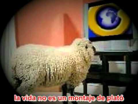Berri Txarrak - Off (subtítulos castellano)