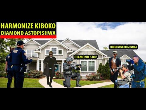 Download HARMONIZE AWA TISHIO MAREKANI NZIMA APEWA ULINZI MPYA DIAMOND APIGWA MARUFUKU KUMFATILIA/USIJE U S A