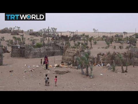 The War in Yemen: Turkey and Qatar to donate $ 1 million to Yemen