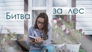 БИТВА ЗА ЛЕС / КОТЫ-ВОИТЕЛИ // CrazyTulipkin