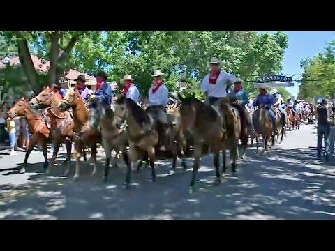 Cattle Drive Kicks Off County Fair in Pleasanton