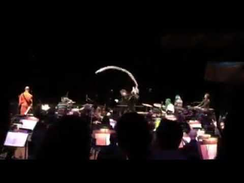 Download The Flaming Lips w/ the CO Symphony Orchestra - Race For the Prize @ Boettcher Concert Hall, Denver Mp4 baru