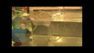 Test - Sauerstoffkonzentrator und Luftgeblubber