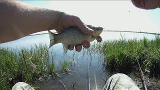 Рыбалка на карася. Озеро «Лебединое».(Первая поездка, в этом году, на «Лебединое» озеро, совпала со значительным переломом погоды, что по моему,..., 2016-05-12T12:49:34.000Z)
