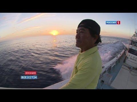 Спорные острова: запретная зона / Senkaku Islands: restricted zone