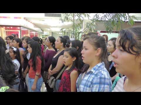 [파라과이 아리랑 플래시몹] Paraguay Arirang Flash Mob