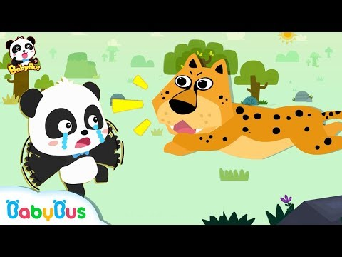 *NEW*베이비버스 동물친구들 개인기쇼~!|누가 가장 잘 할까?|공룡동요|상어도요|베이비버스 어린이 동요|BabyBus