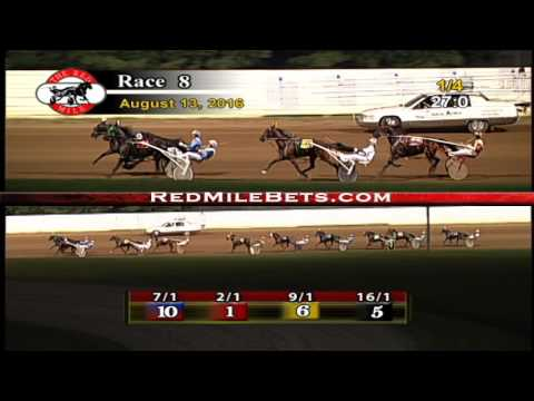 Red Mile Racetrack Race 8 8-13-2016
