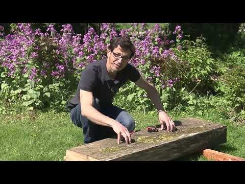 Gartenbrunnen - Wasserspiel Im Garten Selber Bauen